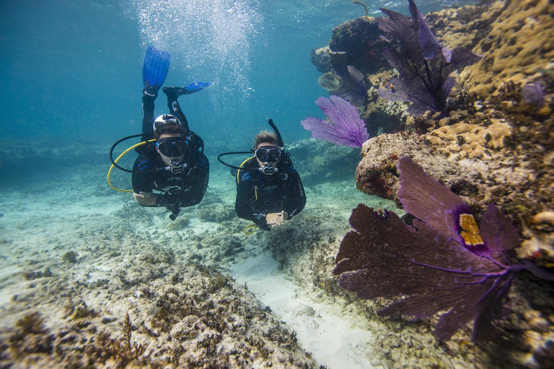 Scuba Dive Adventure of Kos Island